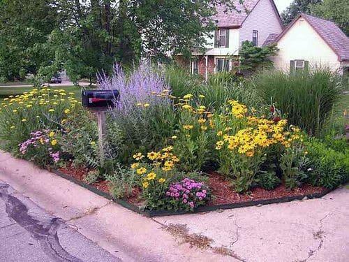 Flowers Mailbox Landscaping Exterior Design