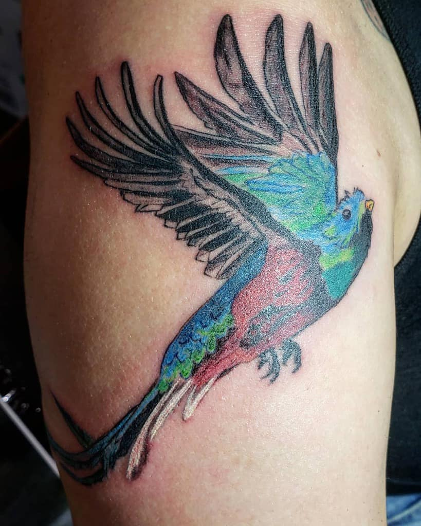 Flying Quetzal Tattoos Ix Jaguarspirittatt