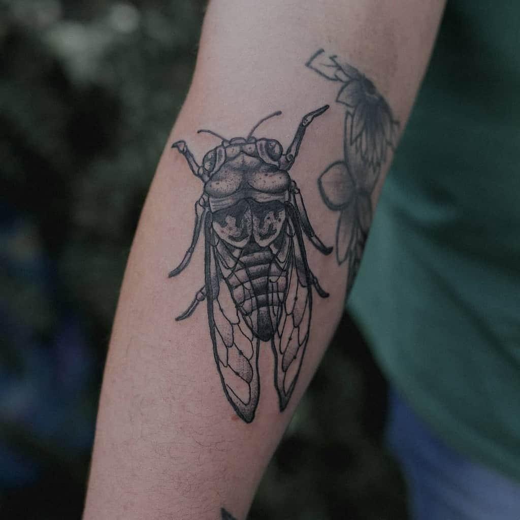 forearm Cicada Tattoos cinzeltattoo