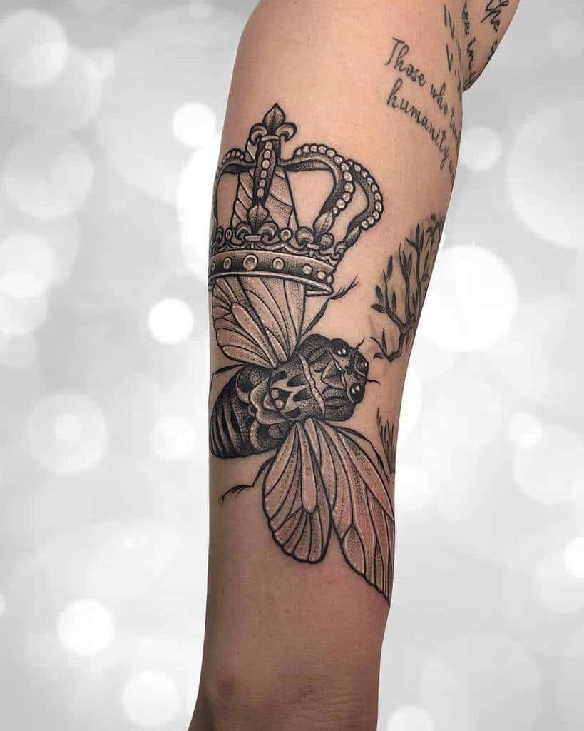 forearm Cicada Tattoos jennietiesman