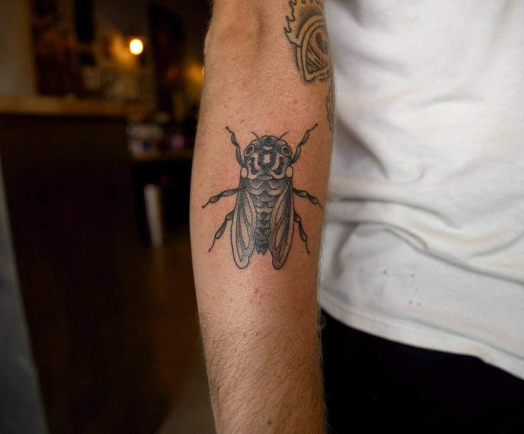 forearm Cicada Tattoos trevordillonart