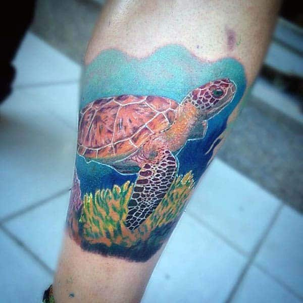 Forearm Male Turtle Underwater Tattoo Design Ideas