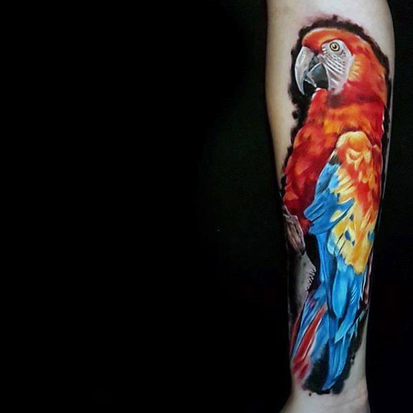 Forearm Mens Parrot Tattoo Ideas