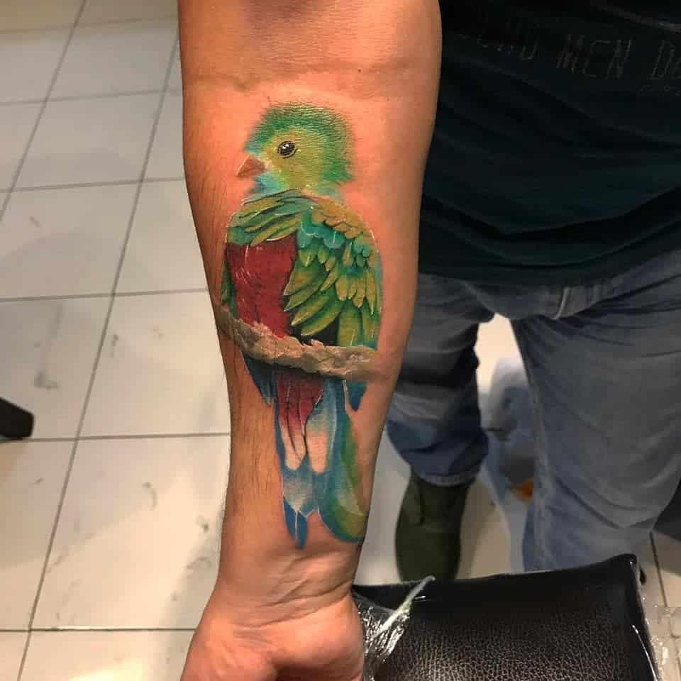 Forearm Quetzal Tattoos Richie.ink