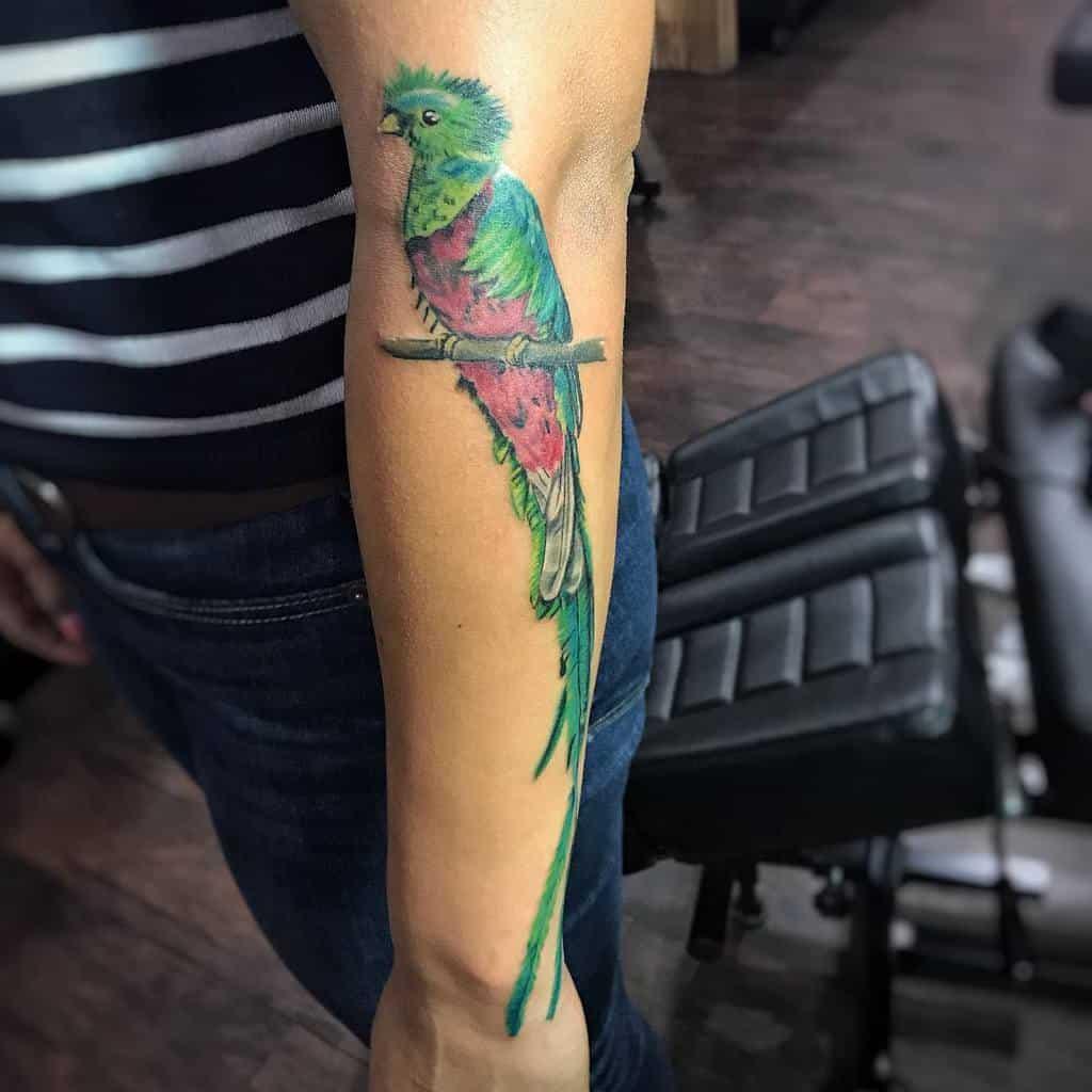 Forearm Quetzal Tattoos Subear