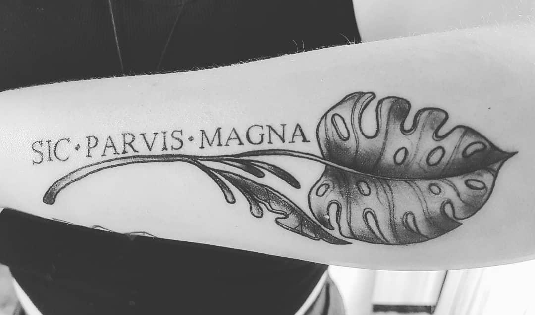 Forearm Sic Parvis Magna Tattoos Cherrybodt