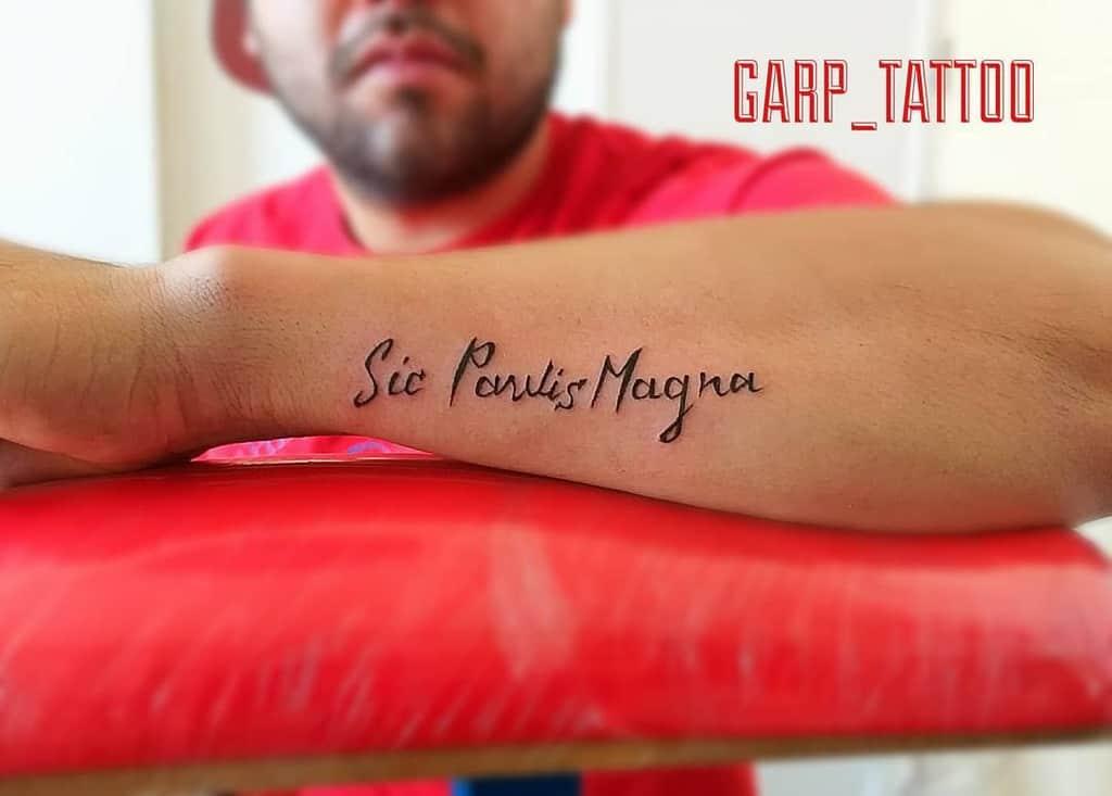 Forearm Sic Parvis Magna Tattoos Garp Tattoo