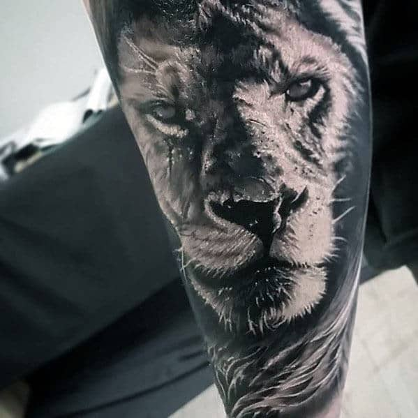 Forearm Sleeve Mens Realistic Lion Tattoos