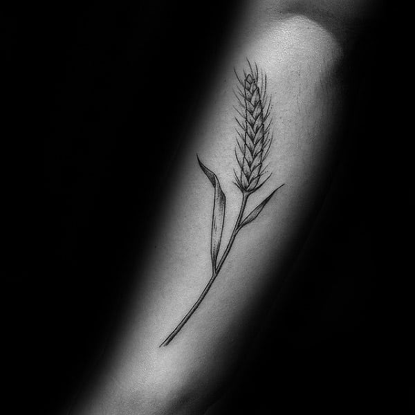 Forearm Virgo Wheat Tattoos For Gentlemen