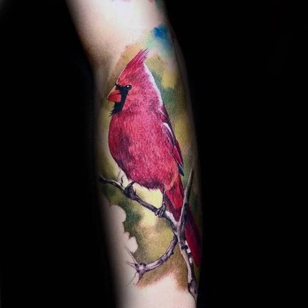 Forearm Watercolor Realistic Male Cardinal Bird Tattoos