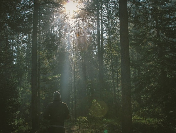 Forest Camping Tips For Men