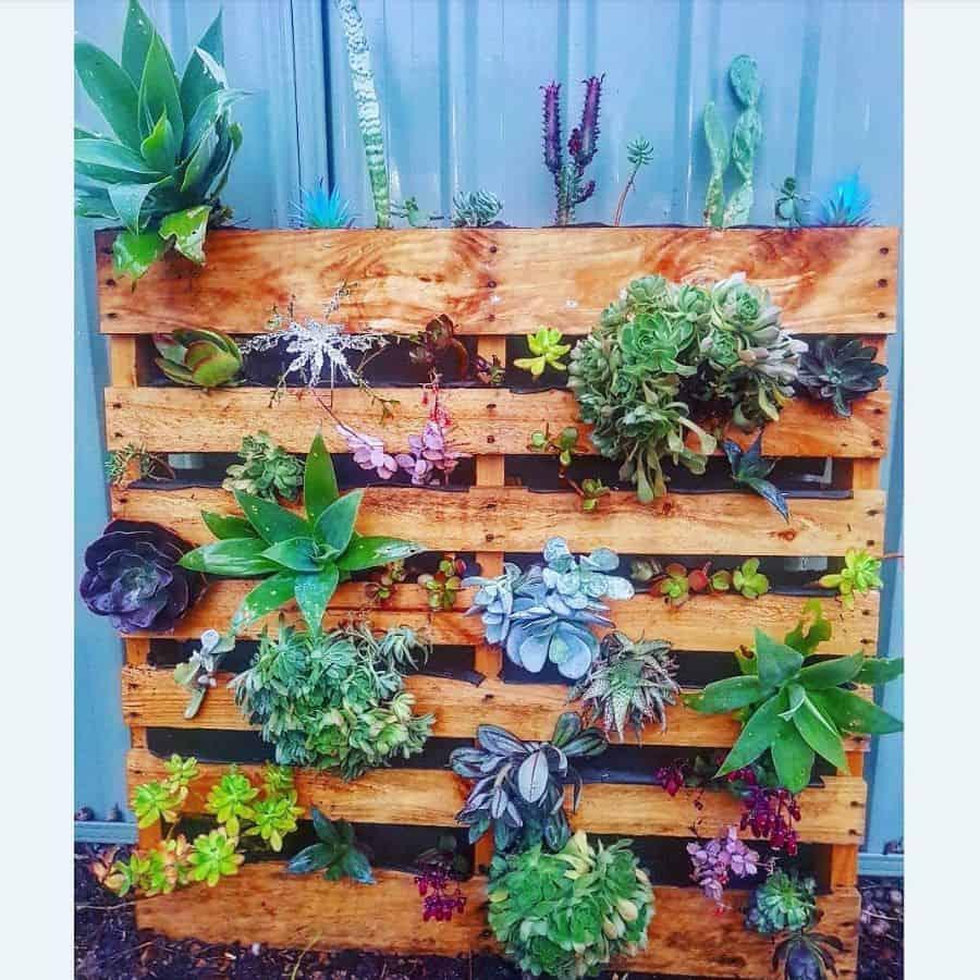 freestanding pallet planter garden ideas _chloe_m_thurks