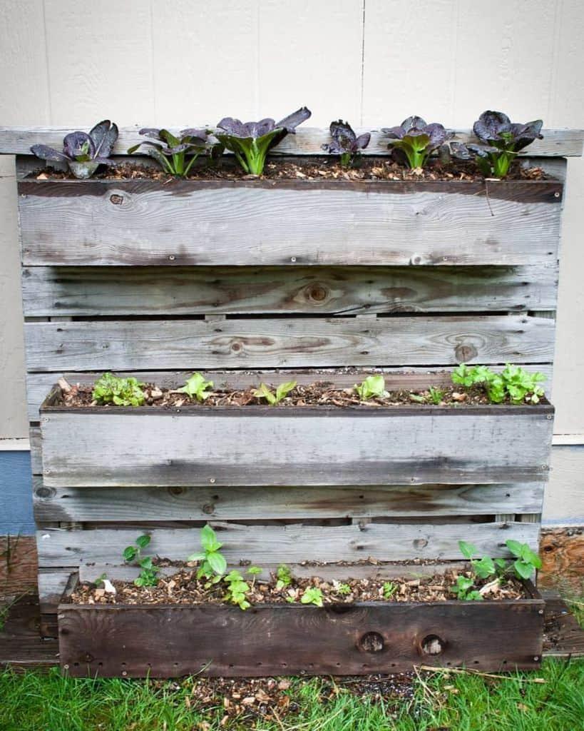 freestanding pallet planter garden ideas farmed.and.foraged