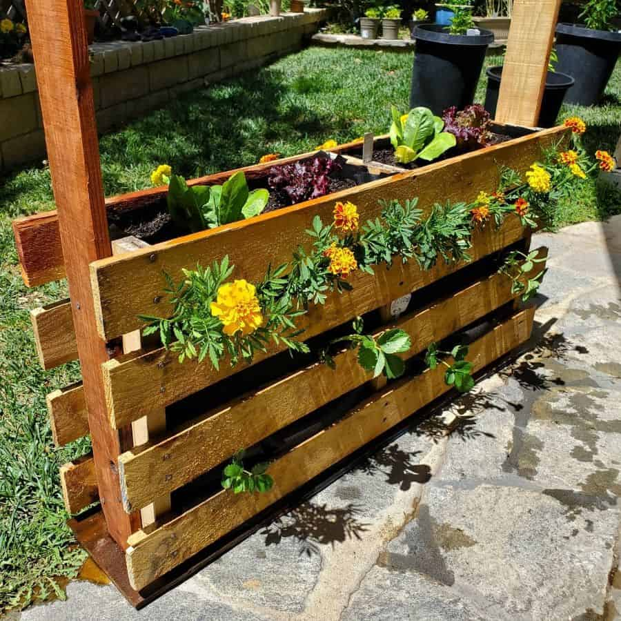 freestanding pallet planter garden ideas socalchilihead