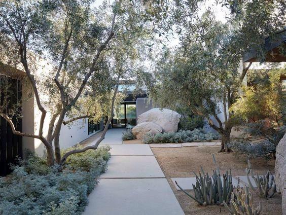 Front Of House Desert Landscaping Exterior Design