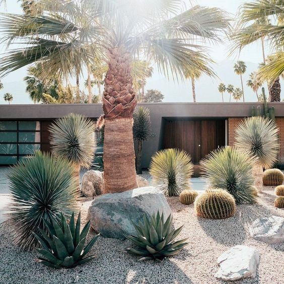 Front Yard Contemporary House Gravel Desert Landscape Ideas