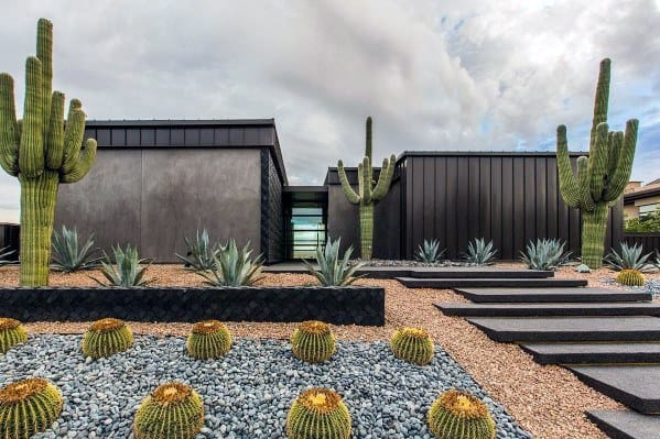 Top 70 Best Desert Landscaping Ideas Drought Tolerant Plants