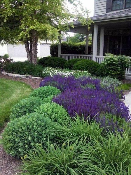 Front Yard Landscape Outdoor Design