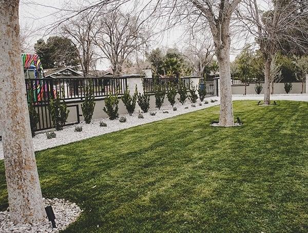 Front Yard Landscaping New American Remodel 2019 Las Vegas