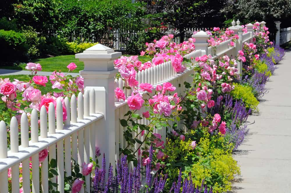 frontyard flower garden ideas 1