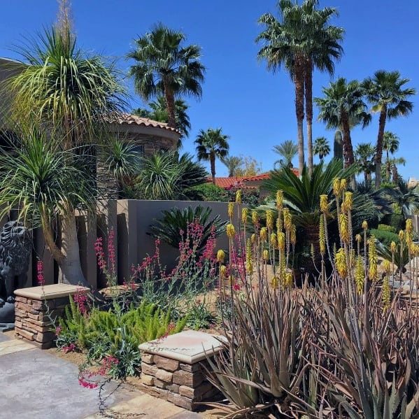 Drought Tolerant Front Yard: Top 70 Best Desert Landscaping Ideas