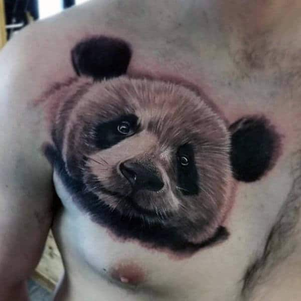 Furry Panda Bear Mens Upper Chest Tattoo With Realistic Design
