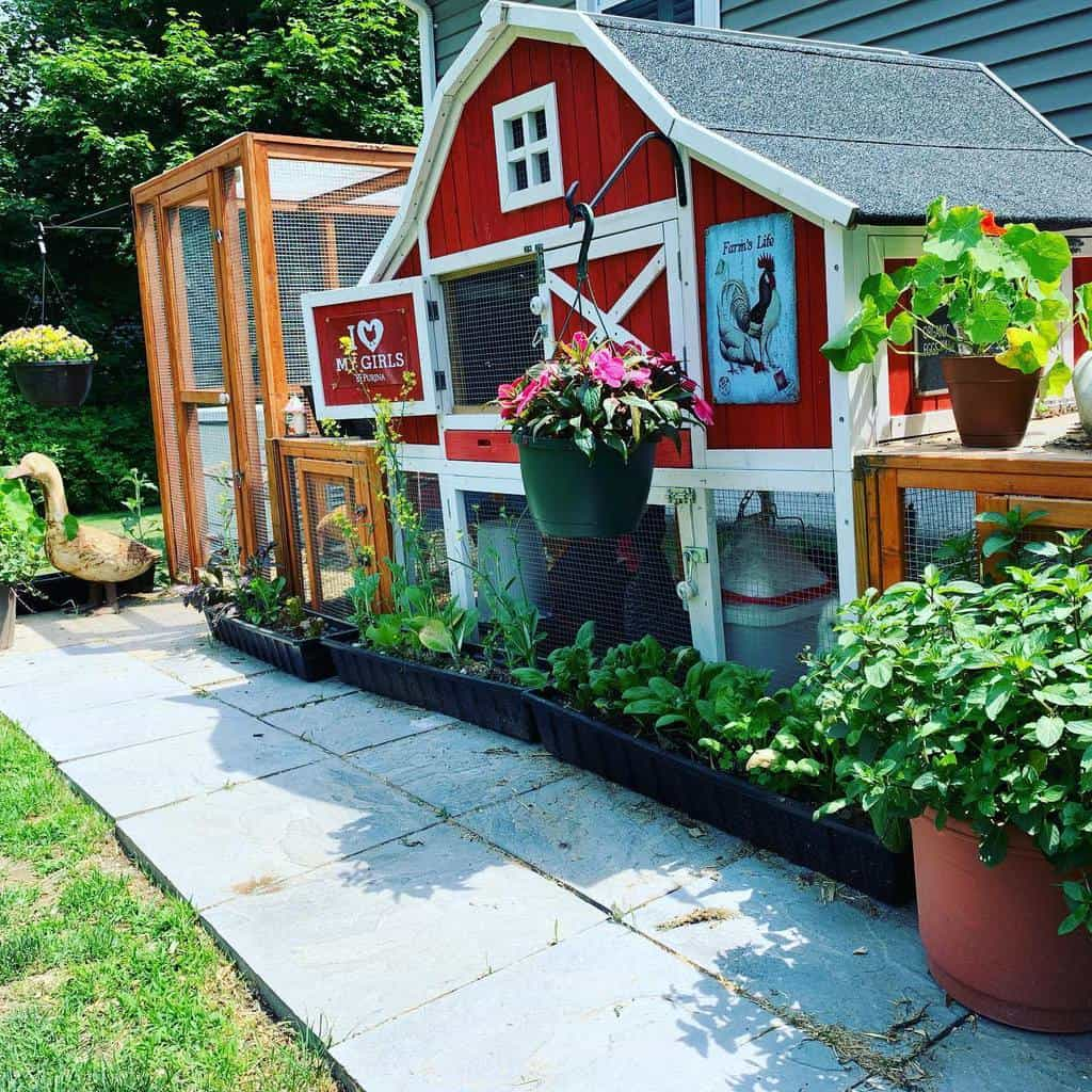 garden chicken coop ideas dreamcometruefarm_herbs_wool