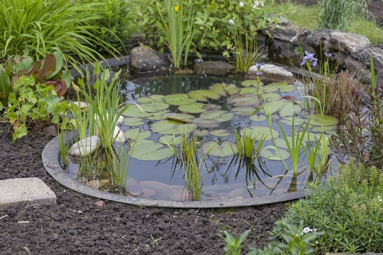 Garden Decoration Backyard Container Pond