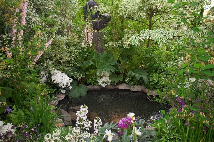 Garden Lanscape Backyard Small Shallow Pond