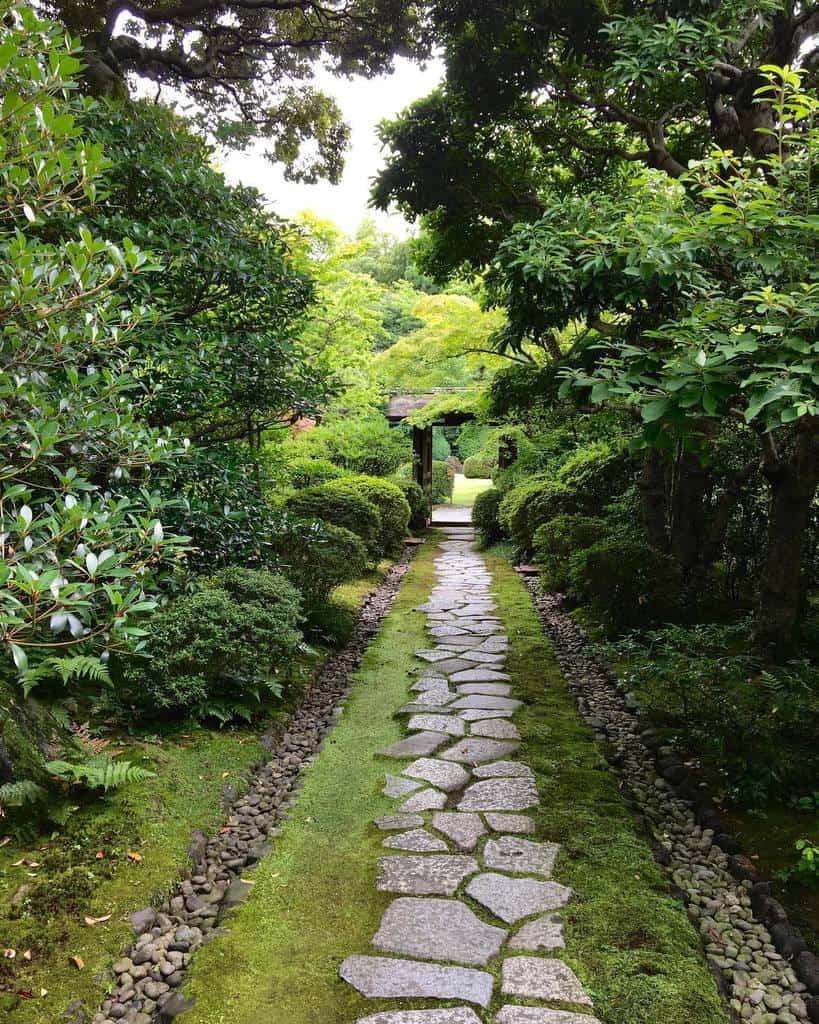 garden path shade garden ideas pine_clay