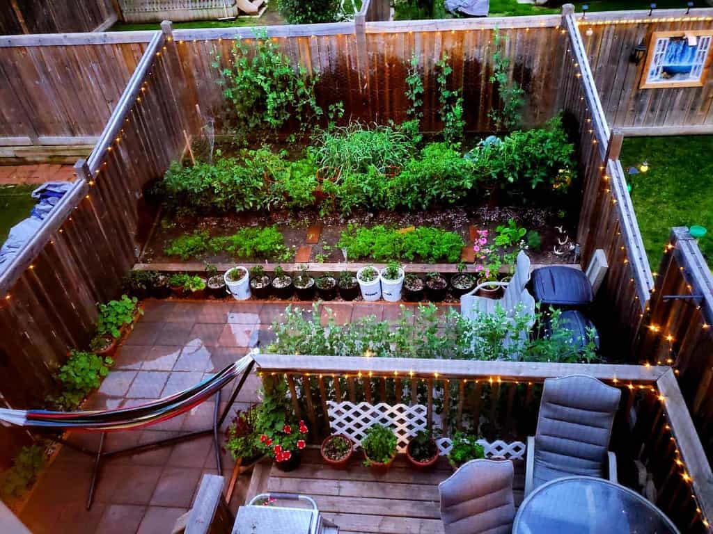 garden small backyard ideas taliaroca