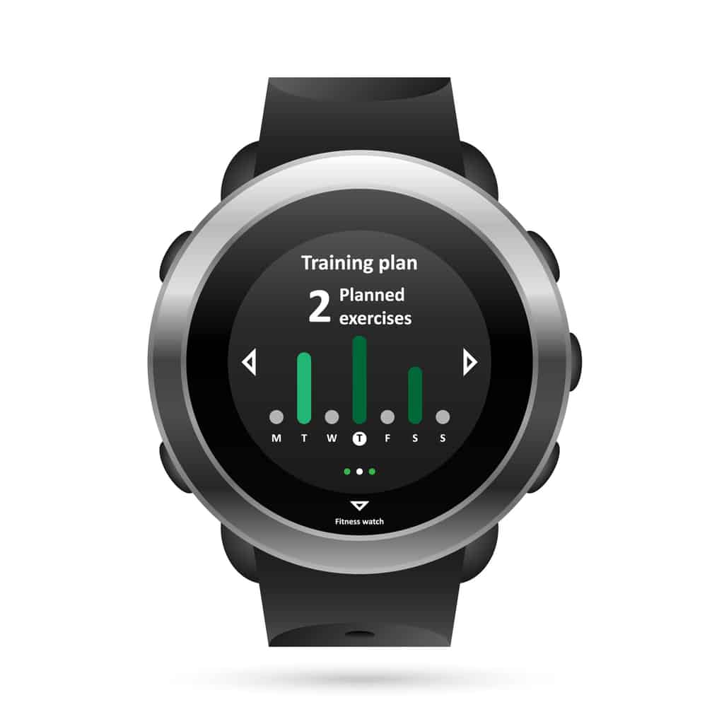 Garmin Fenix 3 Hr Gray Digital Watch For Men