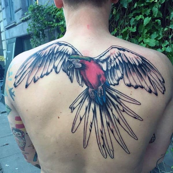 Gentleman With Flying Parrot Upper Back Tattoo