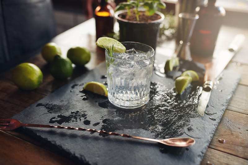The 10 Best Gin Brands for a Tasty Gin and Tonic