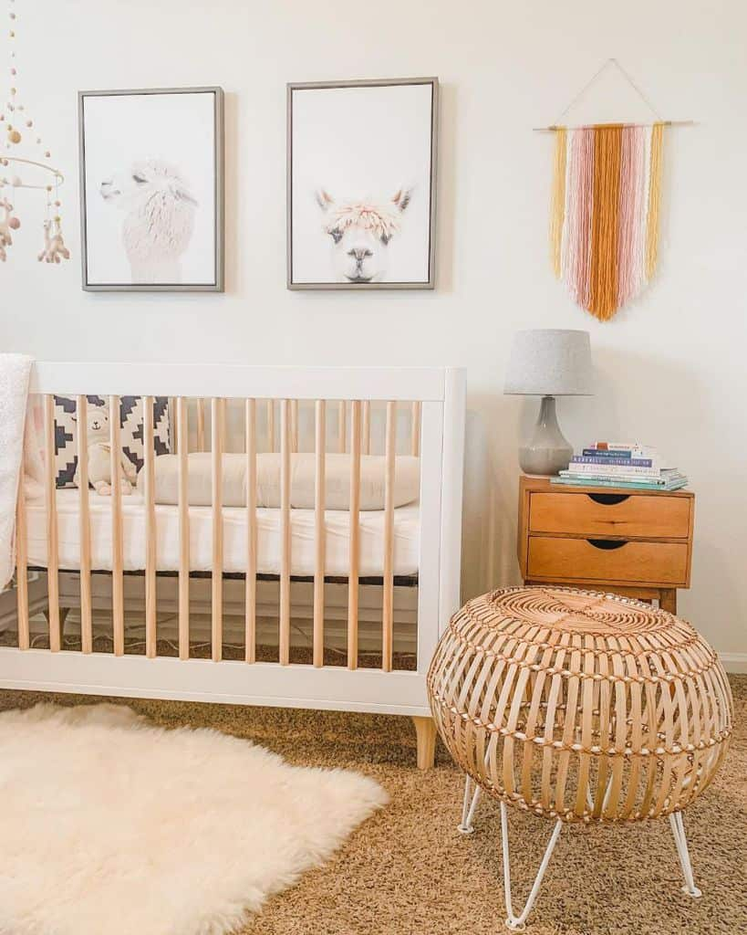 Girls Baby Room Ideas Spacebysexton