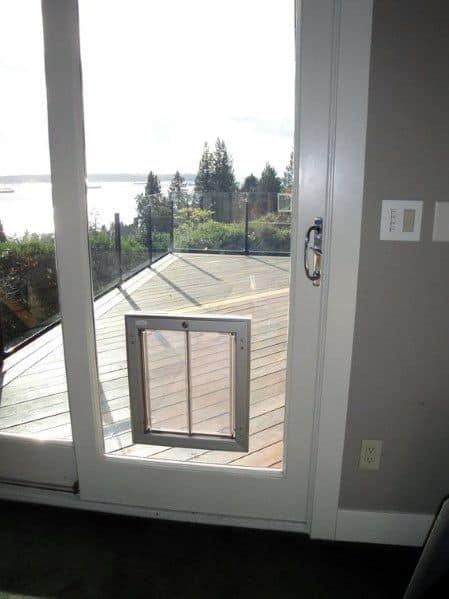 Glass Doggy Door Ideas