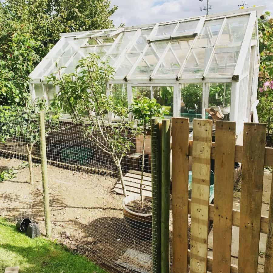 glass greenhouse ideas johnpaul_moule