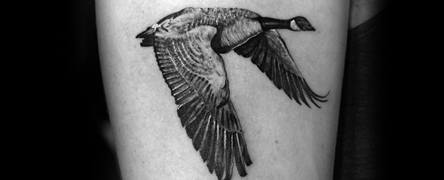 60 Goose Tattoo Ideas For Men – Geese Designs