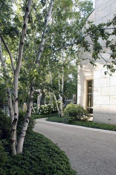Gravel Driveway Landscaping Ideas