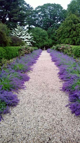 Gravel Walkway Landscape Design Ideas With Purple Flower Plants