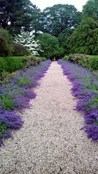 Gravel Walkway Landscape Design Ideas With Purple Flower Plants