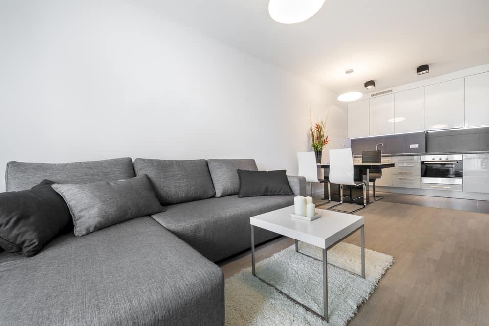 Gray Minimalist Living Room 1