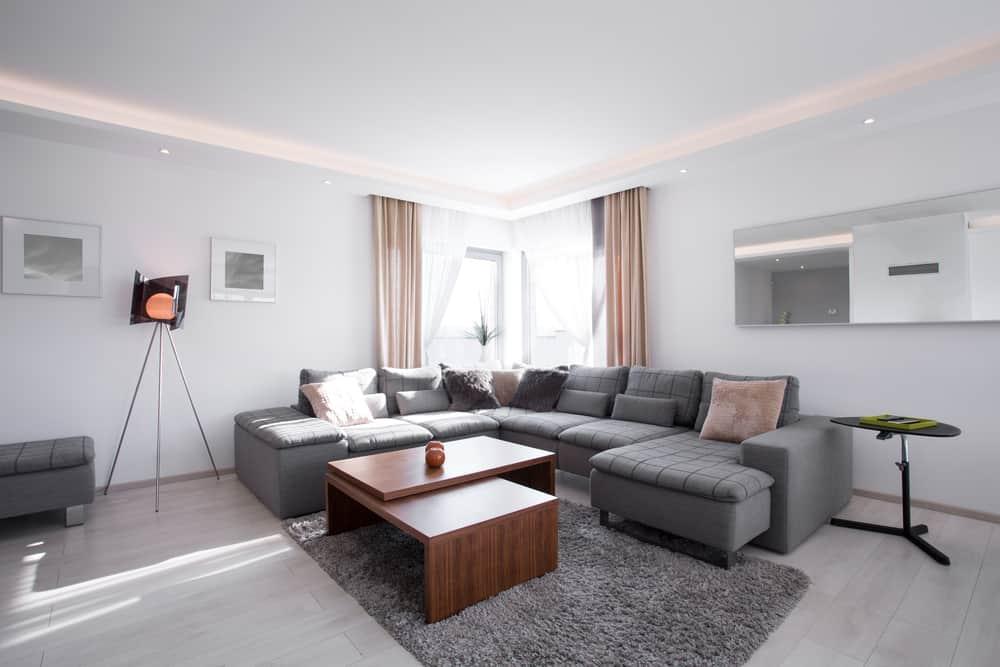 Gray Minimalist Living Room 3