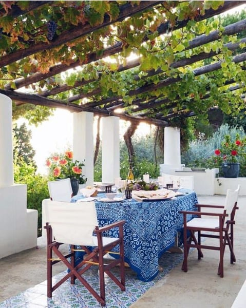 Green Covered Plant Pergola Ideas