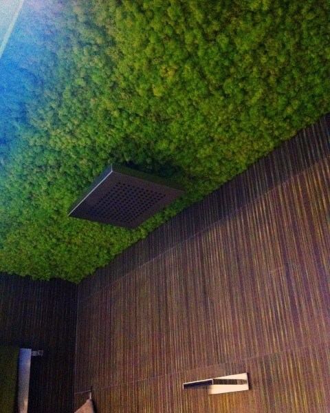 Green Plant Turf Bathroom Ceiling Ideas