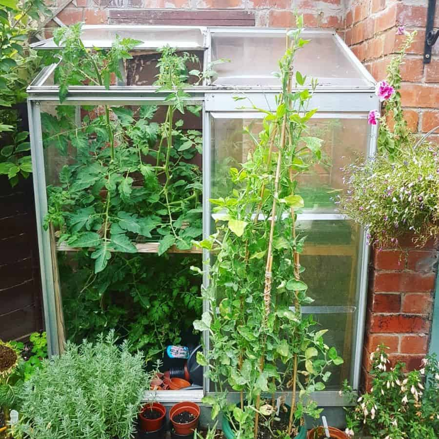 greenhouse vegetable garden ideas greendoorgardening