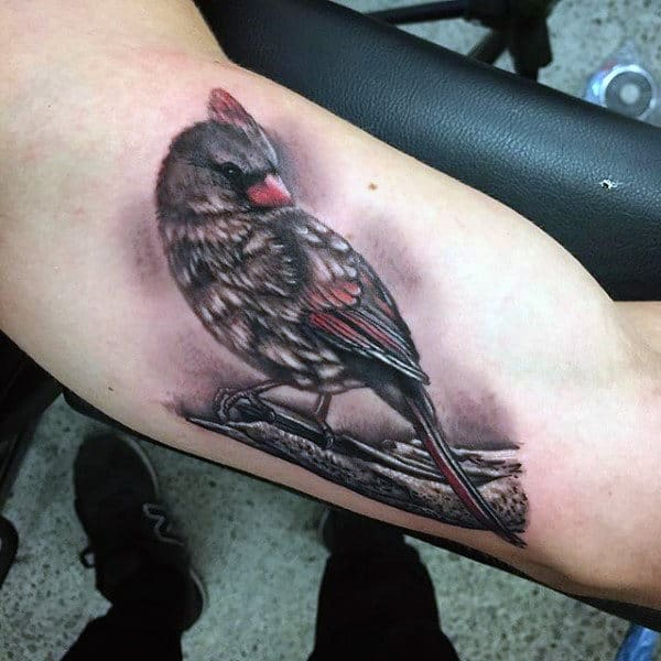 Grey Bird Inner Biceps Tattoo For Males