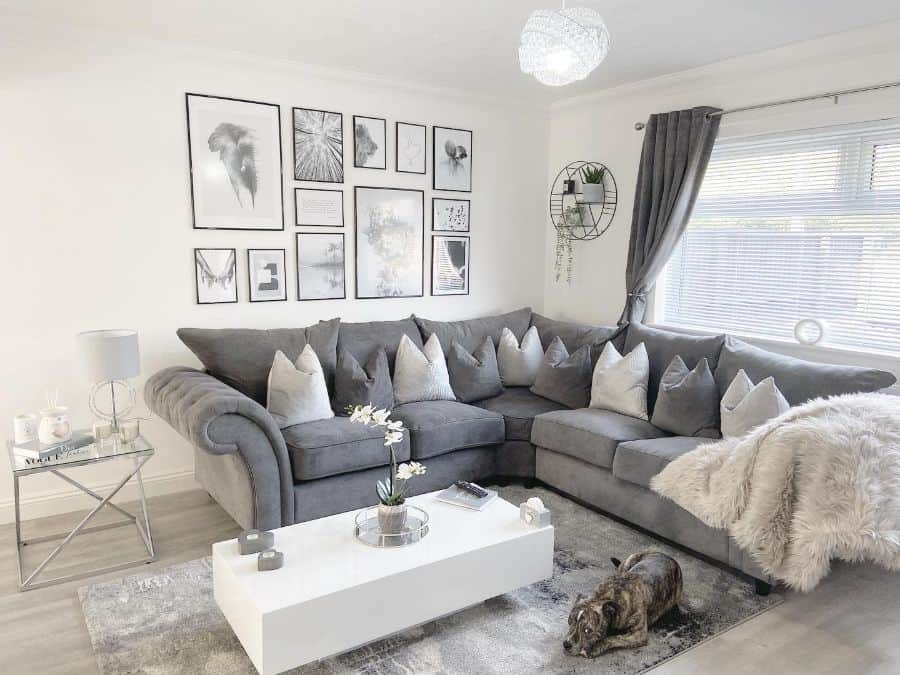 The Top 56 White Living Room Ideas