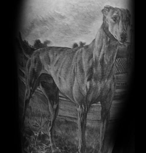 Fashion style 40 Greyhound Tattoo Designs For Men – Dog Ink Ideas for girls
