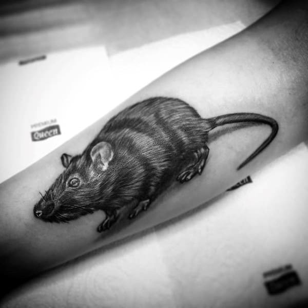 Guy With Forearm Tattoo Of Detailed Shaded Black And Grey Ink Rat Design